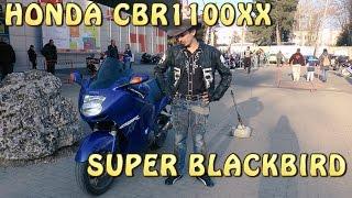 #Докатились! Honda CBR1100XX SUPER BLACKBIRD