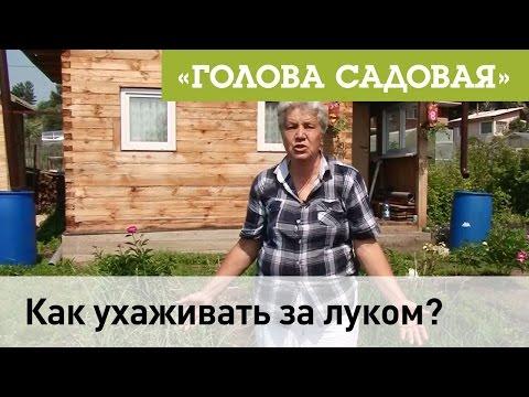 судебный участок № 2 Железнодорожного судебного района г