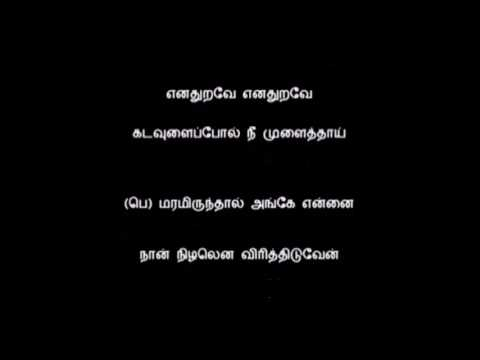 Enadhuyirae enadhuyire songs play songs online or download mp3.