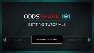 Mark the shark csgo betting wawrinka vs raonic betting expert basketball