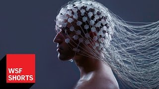 Is a Brain Upload Possible? Max Tegmark on Whole Brain Emulation
