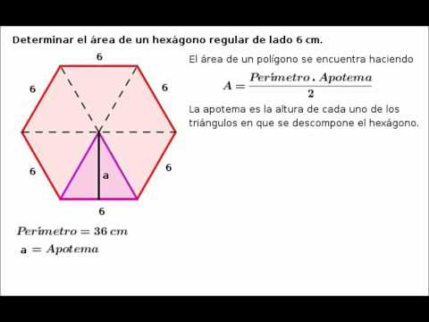 how to find the area of an octagon using trigonometry