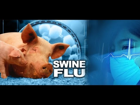 Telangana Tops Number Of Swine Flu Cases; Several Deaths Reported From Hyderabad