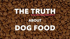 The Truth About Dog Food: Part 1