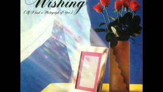 A Flock Of Seagulls - Wishing (If I Had A Photograph Of You) (extended)