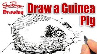 How to draw a cartoon Guinea Pig  - Spoken Tutorial