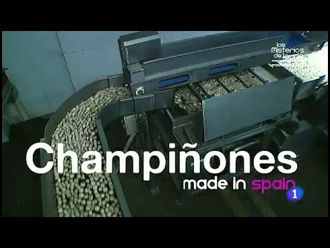 84-Fabricando Made in Spain - Champiñones