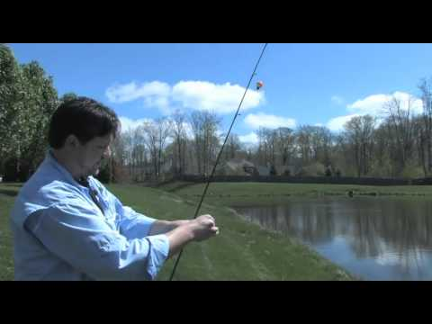 Catch and release explained music search for Fly fishing for dummies