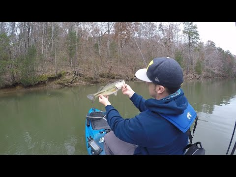 Lake Wylie, Kayak Bass Fishing, Should Have Stayed On The Lake...