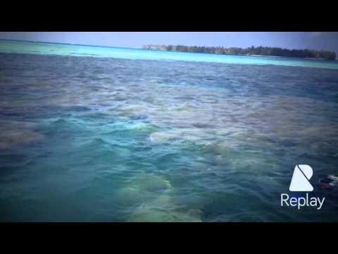 Noob-Traveller : Karimun Djawa Island - Central Java - Indonesia