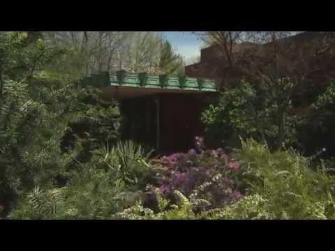 Frank Lloyd Wright's Samara | The Weekly Special