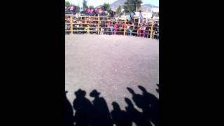 Jaripeo ranchero bramadero logueche 2016