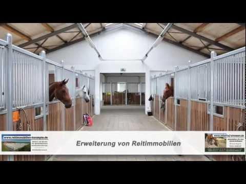 Reiterhof Immobilien Reiterhöfe Kaufen Reitanlagen Immobilien Fachmakler Wohnen mit Pferd