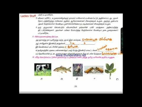 9th Std(Old book 2 term) - Science Book Back Answers