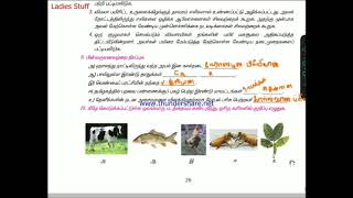 9th Std(1 Term old book) - Science Book Back Answers