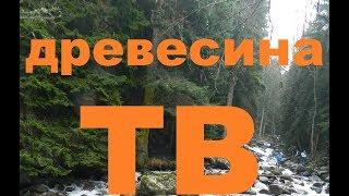 Краткий обзор шлифмашина BOSCH GEX 150 Turbo профессионал секрет защиты шлифовальной площадки..