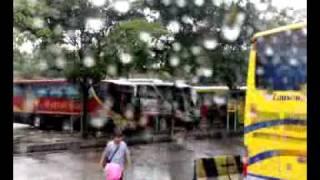 Larkin Rain 08122008091