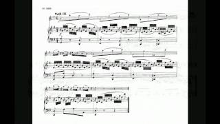 W.A.Mozart Sonata in G major for violin and piano K 379 (2/2)