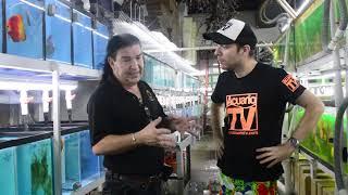 Gambar cover Acuariotv en el Criadero jack watley discus , Miami, Usa.  parte 1de2