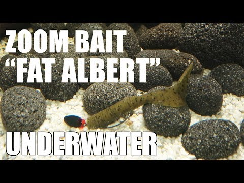 Zoom Bait: Fat Albert! Lure action on a Texas Rig! Underwater! Full HD