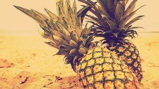 🍹 Guitar Pop Dance Type Beat 2018 | Tropical Club Summer Vibes Type Beat Pop Instrumental 2018