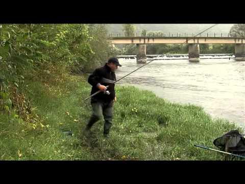 ловля усача на реке лаба