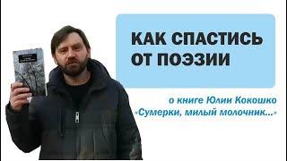 О книге Юлии Кокошко «Сумерки, милый молочник»
