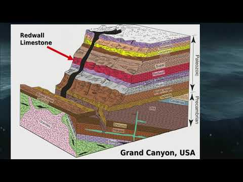 What do the Rock Layers Show? with Dr. Andrew Snelling