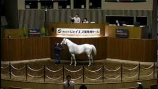 最高額馬は、OP-北九州短距離ステークスなど中央で6勝をあげた【No.14-...