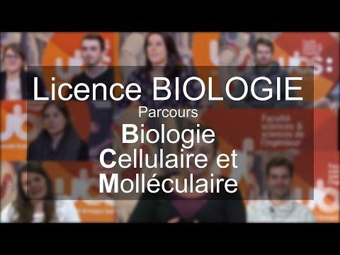 Licence SVT spécialisation Biologie Cellulaire et Moléculaire