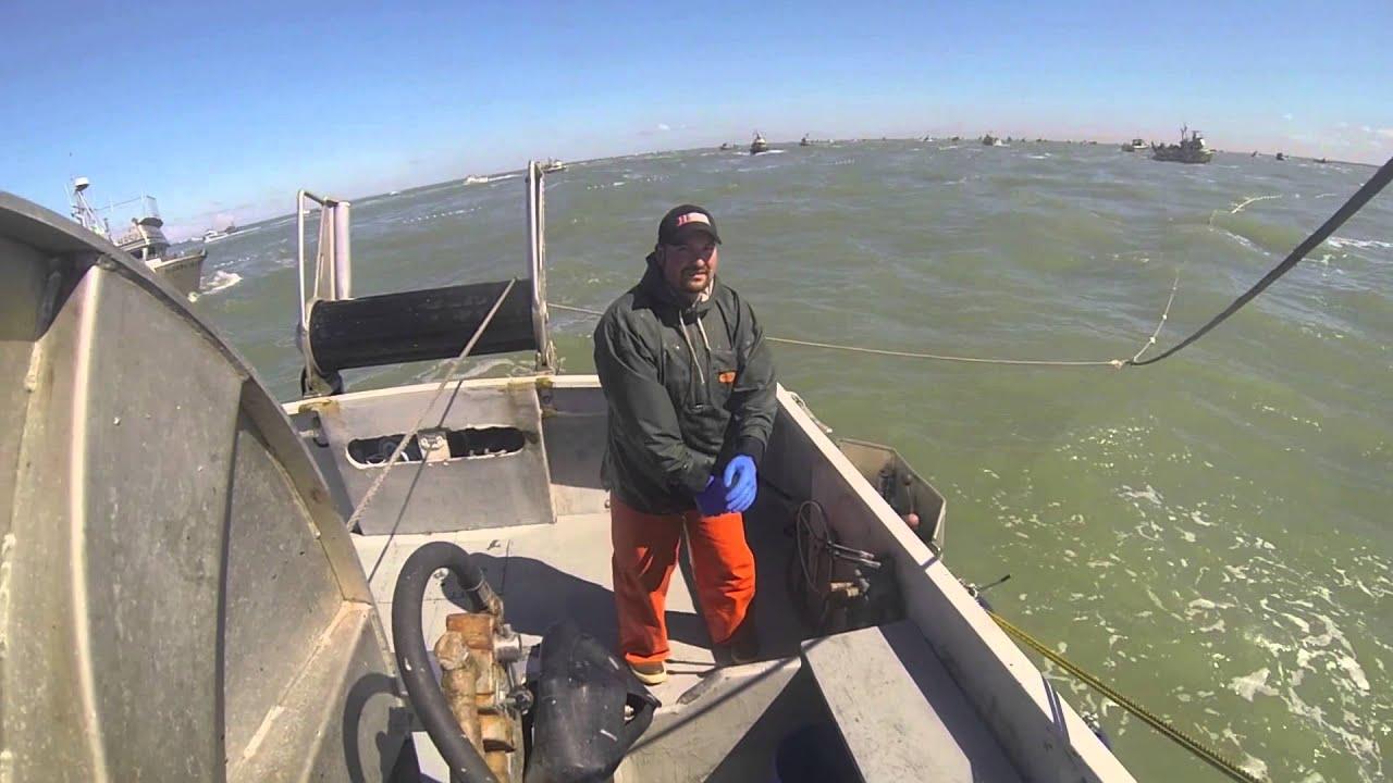 Naknek alaska salmon fishing 2014 youtube for Alaska out of state fishing license