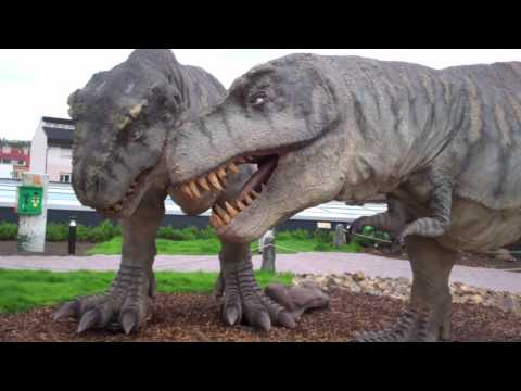 Tyrannosaurus Rex Dinosaurs-Dino Park-Prague-Czech Republic