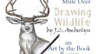 Draw A Buck Mule Deer - Drawing Wildlife Book Review | Art by the Book