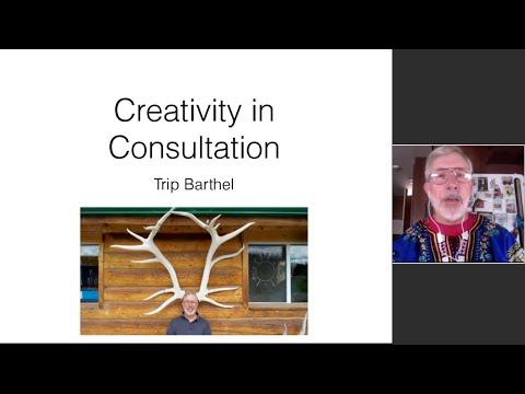 Web Talk # 17   Creativity in Consultation   Trip Barthel