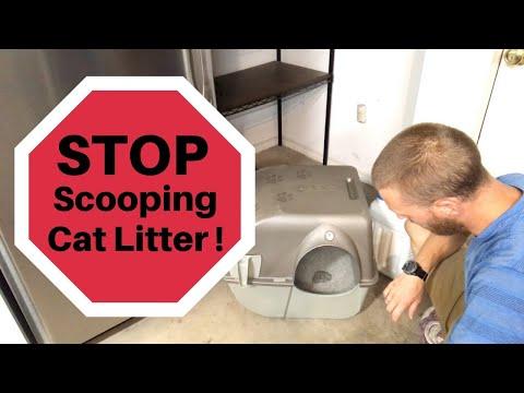 A Better Cat Litter Box: STOP SCOOPING LITTER!   Omega Paw Litter Box Review   Gander Flight