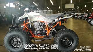 Viar New Razor 250 SUT