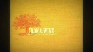 Iron and Wine - Bird Stealing Bread (Facundo Serra Cover)