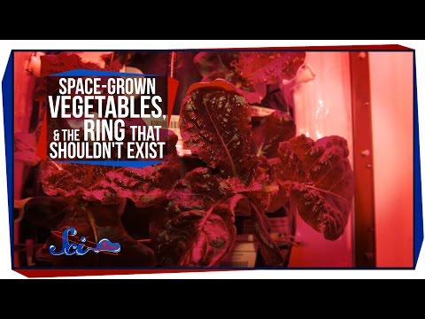 Space-Grown Vegetables, and the Ring That Shouldn't Exist