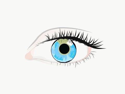 Drawing the Eye in Adobe Illustrator Draw - YouTube