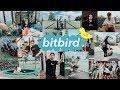 bitbird writing camp feat. San Holo, DROELOE, Taska Black