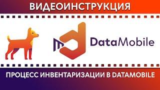 DataMobile: Урок №10. Процесс Инвентаризации с помощью DataMobile