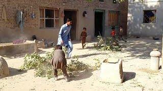 Pakistani Punjab Village Life | The Natural Pakistan