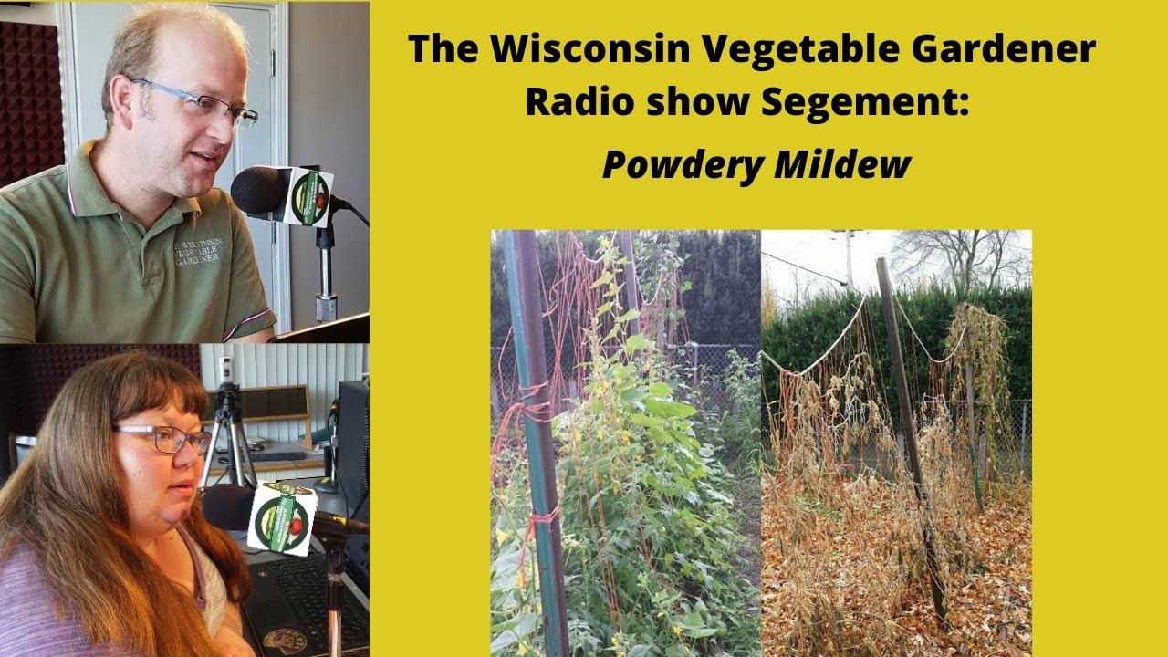 S4E18 Powdery Mildew -The Wisconsin Vegetable Gardener radio show