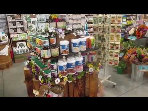 Local Sprouts Grocery Store Tour - aSimplySimpleLife