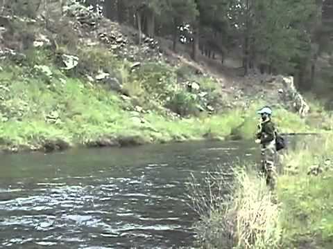 Fly fishing in the black hills of south dakota youtube for Fly fishing south dakota