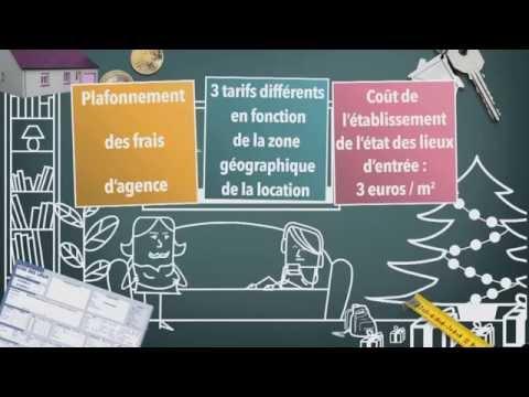 Frais D Agence Et Location Quel Montant Dois Je Payer
