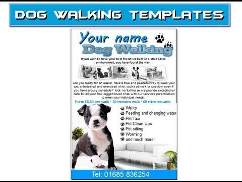 dog walking flyer leaflets templates - YouTube