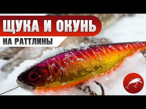 Ловля щуки на раттлины зимой. Ловля щуки и окуня на раттлины и балансиры. Первый лед 2018-2019