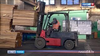Столичные специалисты помогли решить проблемы фанерного завода в Нижнем Ломове