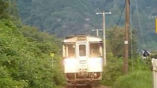 [警笛あり]JR四国 1000形気動車 土讃線 阿波池田駅付近通過